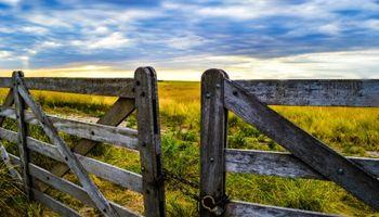 Cuenta regresiva para ganancias: un mes clave para las empresas agropecuarias