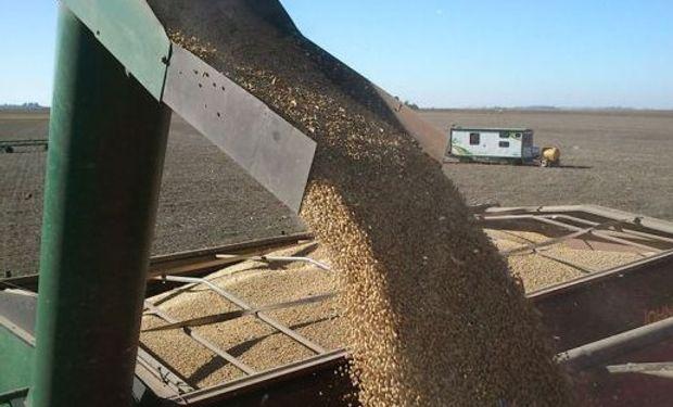 Impuesto a las Ganancias. Comercialización de Granos no destinados a la siembra y legumbres secas. Retención. Modificación. Actualización de importes.