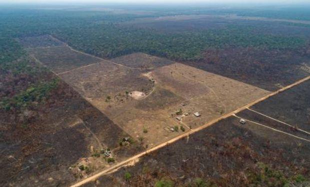 ¿Cuándo y cómo inciden los incendios del Amazonia en el régimen de lluvias de Argentina?