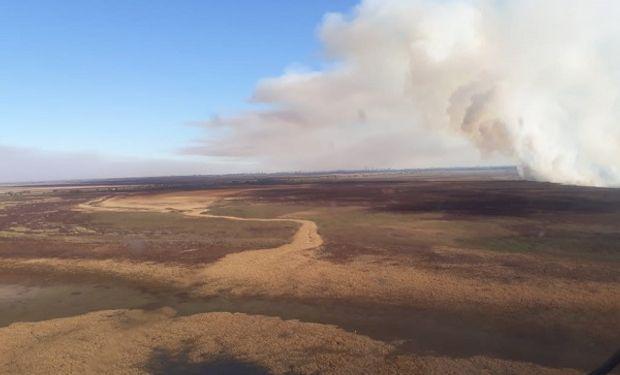 Incendios: declaran zona crítica al delta del Paraná y Nación avanza contra los propietarios