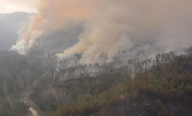 Incendio consumió más de dos mil hectáreas
