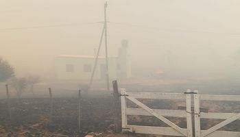 Córdoba: solicitan la Emergencia Agropecuaria para las zonas incendiadas