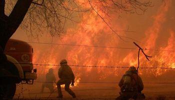 Por los incendios, declaran la emergencia agropecuaria en Córdoba