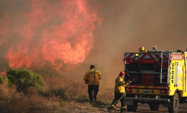 Mendoza declaró la emergencia agropecuaria en el sur de la provincia.