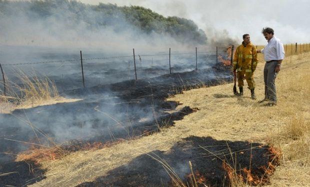 Otras localidades afectadas son Sierra de la Ventana, como Bahía Blanca, Monte Hermoso, Coronel Suárez, Punta Alta y Coronel Pringles.