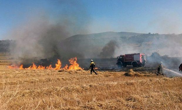 Buscan evitar incendios en los campos.