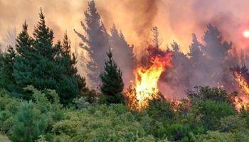 Chubut: más de 6 mil hectáreas arrasadas por el fuego