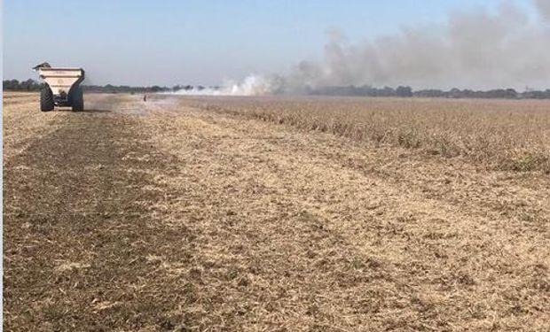 """""""Parece una película de terror"""": productores denuncian incendios intencionales en la cosecha"""