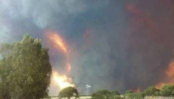 Dramáticos testimonios de los productores de las zonas afectadas por los incendios