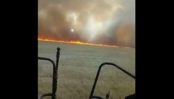 Video: se incendia el trigo en Brasil por la persistente sequía