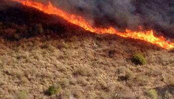 Diputados trata en comisión la modificación de la Ley de Manejo del Fuego que regula las actividades en campos incendiados