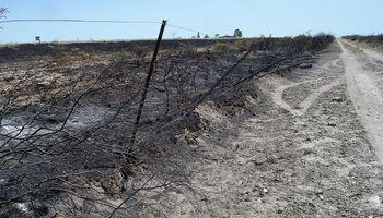 Según el INTA, los incendios en Río Negro afectaron 32 mil hectáreas