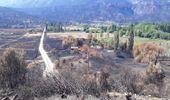 El Senado declaró zona de desastre a la Comarca Andina y el INTA asiste a productores afectados