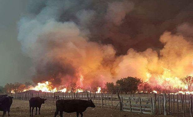 La medida fue decidida en la última reunión de la Comisión Nacional de Emergencias y Desastres Agropecuarios.