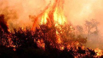 Confirman que ya no quedan incendios activos en La Pampa