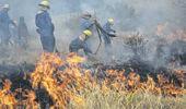 Recomendaciones sobre prevención, control y disminución de incendios rurales