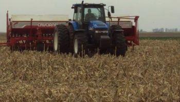 Lejos de la zona núcleo, la incertidumbre por el trigo es mayor