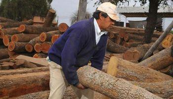 La madera en Córdoba siente el golpe del estancamiento económico