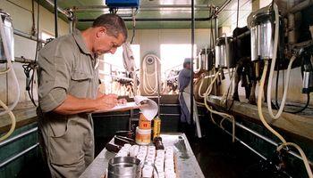 Pymes lácteas se sumarían a luchar contra el hambre con 100 puntos de venta directa