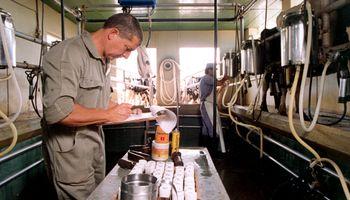 Buscan crear un mercado lácteo y fijar precios de referencia