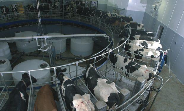 Industria lechera en Argentina.