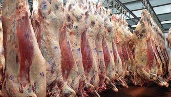 Evasión en la industria de la carne