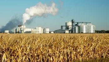 Radiografía de la crisis del etanol en medio de la pandemia