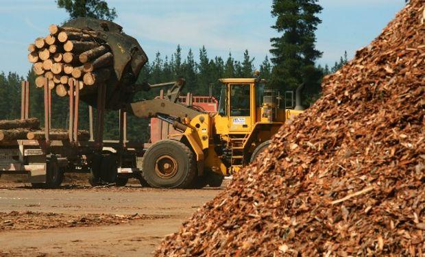 Crece el reclamo de la industria forestal.
