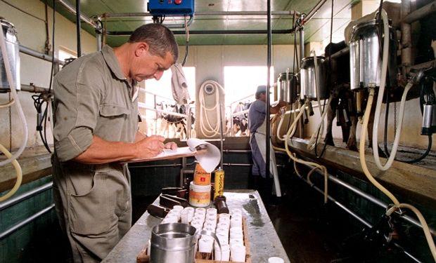Para el Gobierno, es baja la concentración en la industria láctea