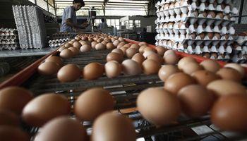 Industria de ovoproductos brasileña le pasó el trapo a la argentina