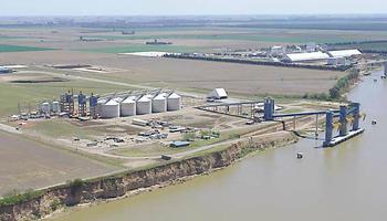 Nueva caída en la industrialización de la soja argentina
