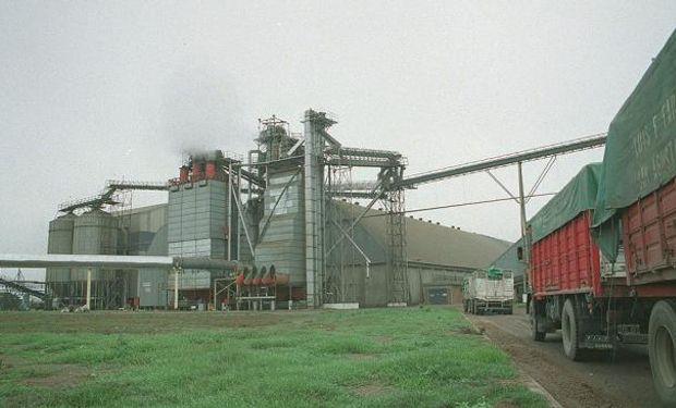 Estiman en 30% capacidad ociosa de los aceiteros
