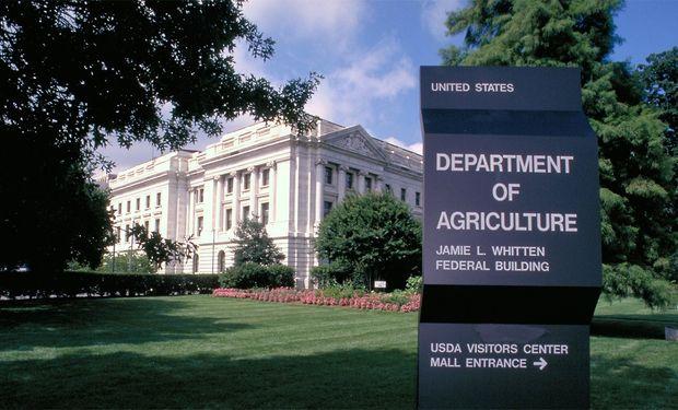 Soja, maíz y trigo cerraron con subas luego del informe del USDA