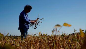 Ingenieros agrónomos y Ley de Educación Ambiental: la mirada desde la ruralidad