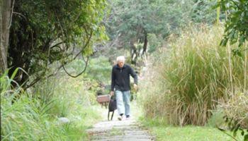 """""""Amor por la Botánica"""": amplio reconocimiento al Ing. Juan José Valla, que falleció esta mañana"""