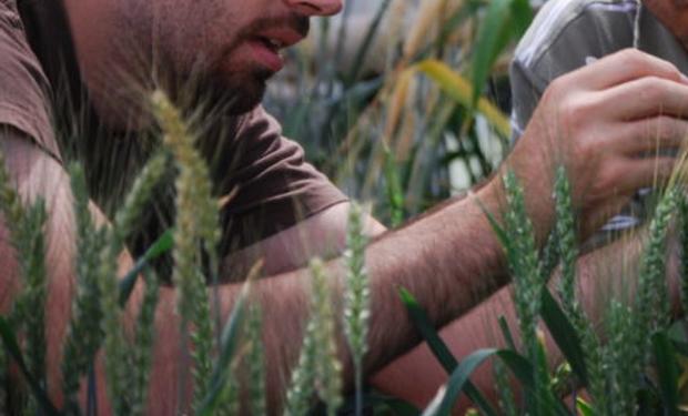 La actualidad de una profesión clave para el desafío de cubrir la creciente demanda de alimentos a nivel mundial.