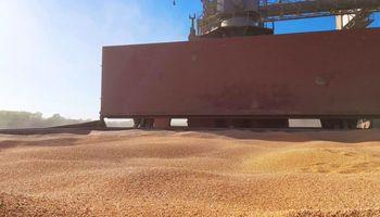 Cosecha: se recupera el ingreso de camiones al puerto y descartan rumores de cierre