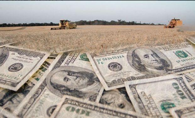 El sector agroexportador liquidó más de 501 millones de dólares durante la semana pasada