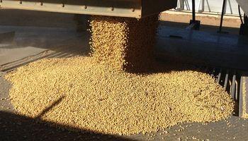 Ingreso de soja desde Sudamérica genera presión en Chicago