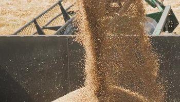 Aclaran que el paro del campo no provocará aumento de precios ni escasez de alimentos