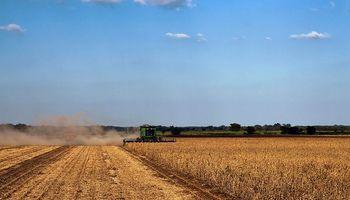 Inmobiliarias rurales esperan mejora de la actividad después de las elecciones