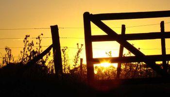 Se reactivará la compraventa de campos con los resultados del sinceramiento fiscal