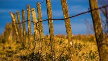 Inmobiliario rural: expectativa por mayores consultas