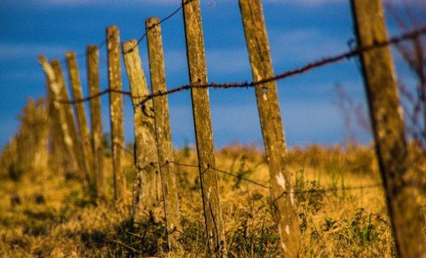 La Cámara Argentina de Inmobiliarias Rurales (CAIR) publicó el Índice de Actividad del Mercado Inmobiliario Rural (InCAIR).