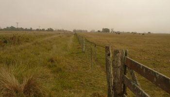 Ruralistas alertan que no podrán pagar el incremento del Impuesto Inmobiliario