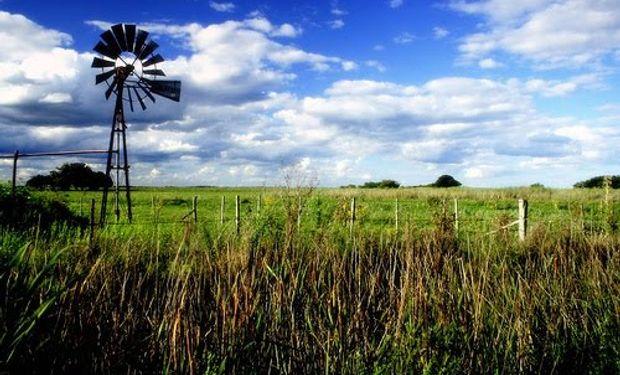 Según expresó Layus, esta suba del inmobiliario rural neutraliza lo que los productores habían ganado con la quita de retenciones.