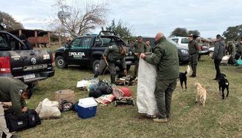 Santa Fe: secuestraron 48 novillos y novillitos tras un allanamiento por abigeato