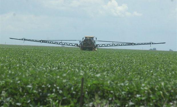 La perspectiva para la próxima siembra de granos gruesos (maíz y soja) no se muestra alentadora en cuanto a la demanda de insumos. Foto: La Nación.