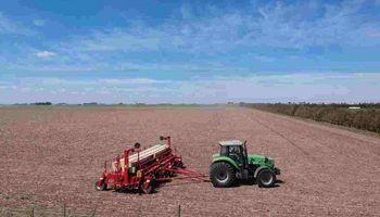 Relanzan ProRindes, una herramienta para estimar el rendimiento de los cultivos