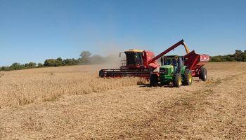 Maquinaria agrícola: las ventas se mantienen a buen ritmo a pesar de la estacionalidad